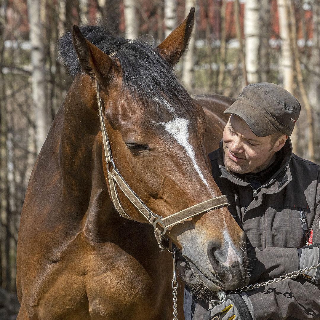 """KUVAREPORTAASI: Hevostenhoitaja Kai Majander: """"Tärkeintä on saada hevosen luottamus omalla toiminnalla"""""""