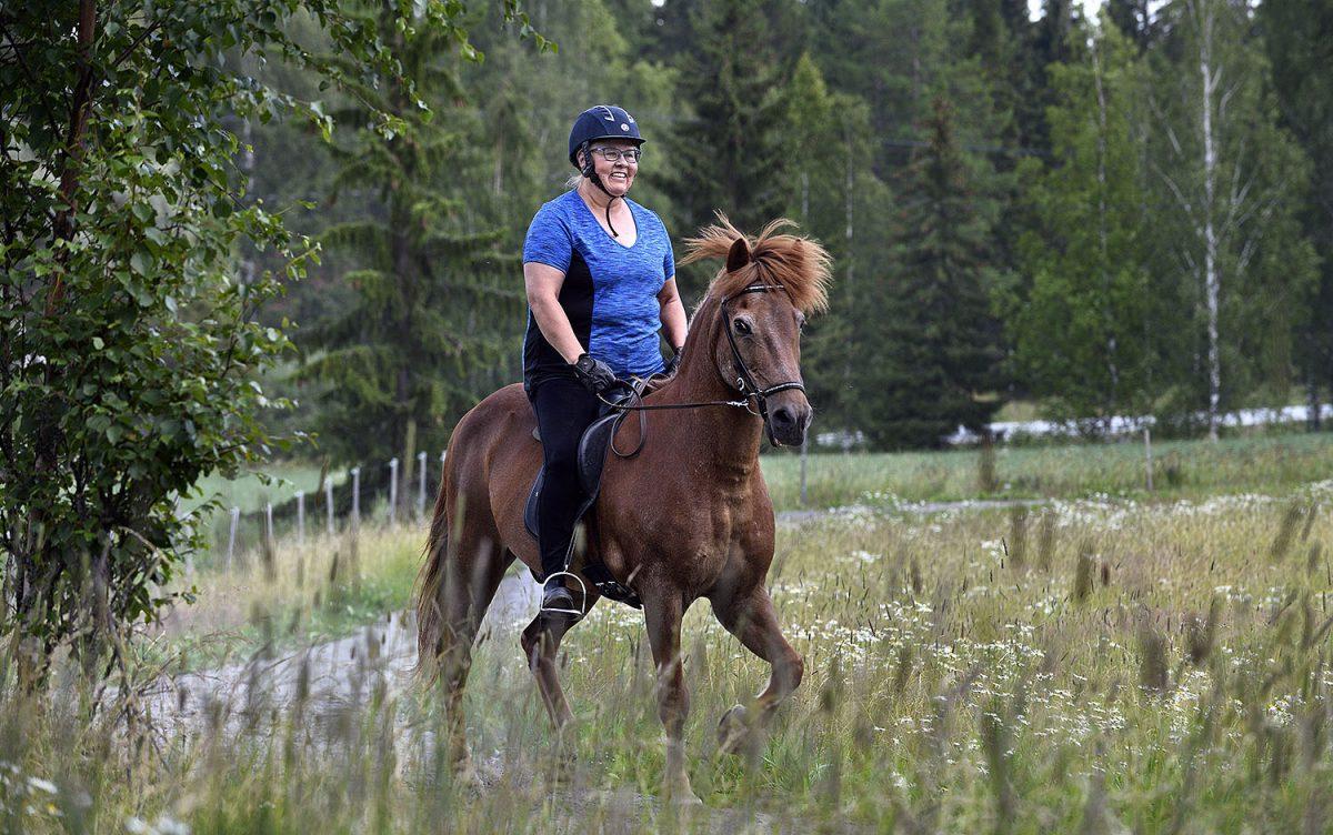 """HARRASTAJA: Soile Säiniö islanninhevosten lumoissa: """"Hevosten kanssa pitää olla sataprosenttisesti läsnä"""""""