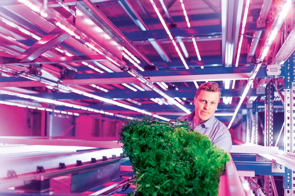 KEKSINTÖ: Kerrosviljely nojaa huipputeknologiaan